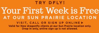 sp_week_free_1